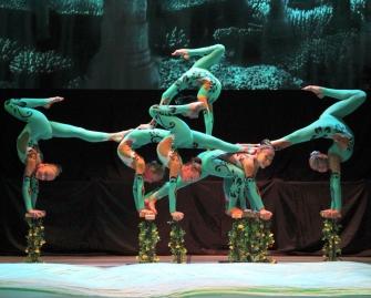 Образцовый коллектив студия цирковой гимнастики «ГРАЦИЯ»